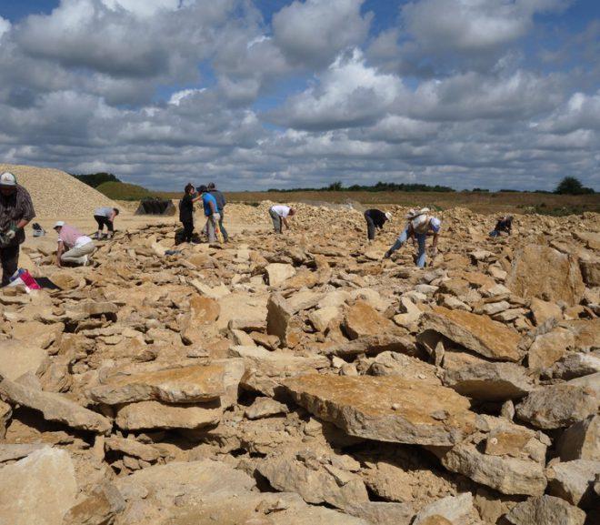 Accueil de l'association Paléontologique de Pernes les fontaines